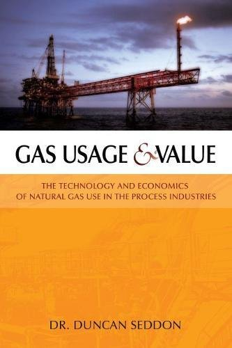 Gas Usage & Value: The Technology and Economics of Natural Gas Use in the Process Industries (Best Use Of Technology)
