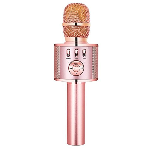 Top 10 Best Karaoke Microphones Of 2019 No Place Called Home