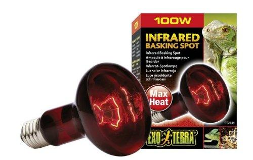 100 Watt Heat Glo Infrared 120 Volt tortoise product image