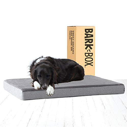 Barkbox Memory Foam Platform