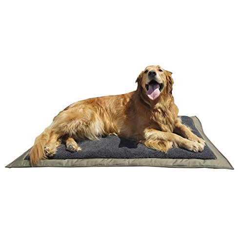Lightspeed Outdoors Self Inflating Fleece Top Cover Travel Dog Bed | Kennel Bed , 32-Inch by 42 Inch ()