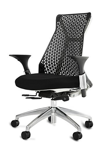 Mesh Back Office Chair, Ventilated Mesh Executive Chair Adjustable Arms & Soft Thermoplastic Polyurethane Ergonomic Mesh Chair Back – 250 Lbs Rated ()