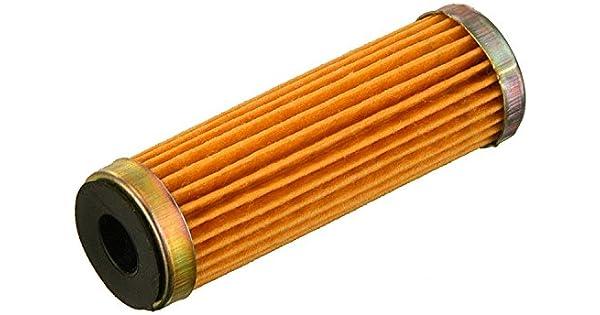 Amazon.com: Fram cg3389 Combustible cartucho de filtro ...