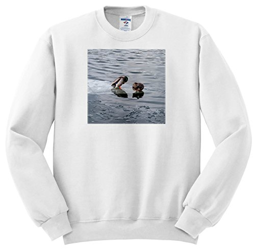 Price comparison product image Alexis Photography - Birds - Two Mallard Ducks Busily Plume Themselves on an ice in Winter River - Sweatshirts - Youth Sweatshirt XS(2-4) (ss_284003_9)