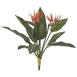 21 Inch Bird of Paradise Plant Signature Foliage 7