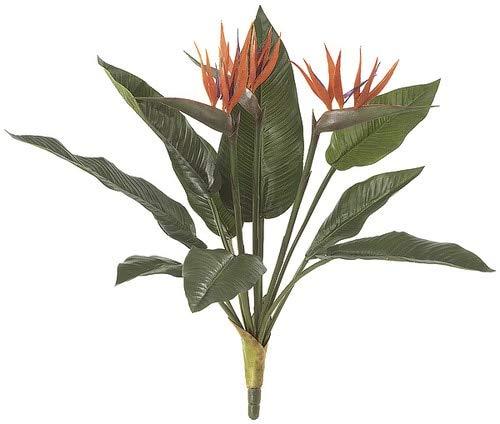 21 Inch Bird of Paradise Plant Signature Foliage