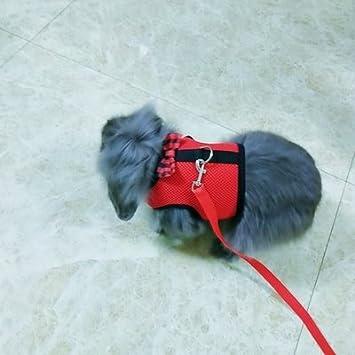 Imbracatura con guinzaglio per coniglio o gattino morbida e traspirante alla moda per piccoli animali regolabile