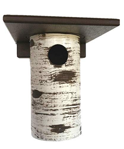 DutchCrafters Gilbertson Bluebird House, Outdoor Nest Box Sparrow Resistant