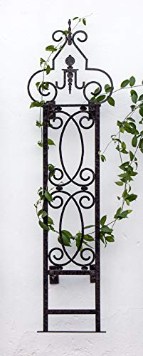 H Potter Outdoor Metal Wall Decor or Trellis for Climbing Plants Suitable as Art Garden Panel Roses Vines Privacy Includes Brackets to be Hanging Gar124w1 (Trellis Brackets)