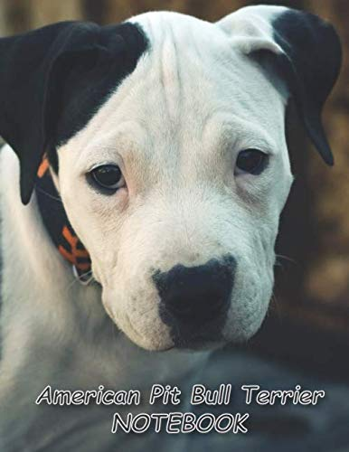 "American Pit Bull Terrier NOTEBOOK: Dog Notebooks and Journals 110 pages (8.5""x11"")"