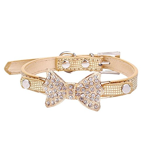 Robiear Cute Dog Collar Bling Crystal Bowknot Pet Collar Puppy Choker Cat Necklace (Gold, - Designer Collars Nylon Dog