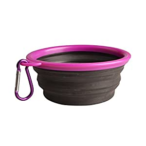 low-cost Patgoal Collapsible Dog Bowls Foldable Travel Bowls for Feed & Water on Journeys, Hiking, Kennels & Camping