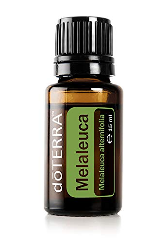 doTERRA Melaleuca Essential Oil - Promotes Healthy Immune Function, Seasonal Protection, Cleansing and Rejuvenating Effect on Skin; For Diffusion, Internal, or Topical Use - 15 ml (Best Uses For Tea Tree Oil)