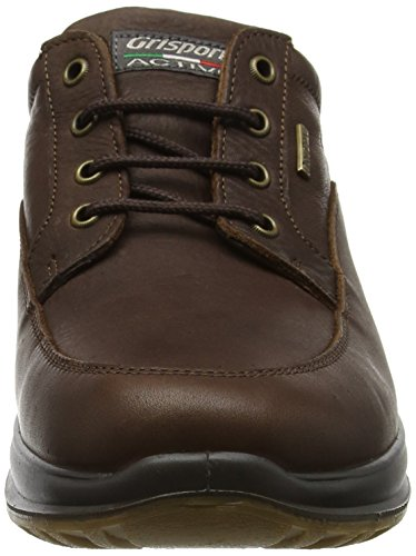 Lightweight Comfort Livingston Brown in Brown Leather Shoe Grisport wqpTZH55