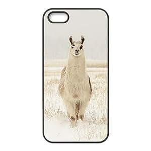 Alpaca DIY Case for Iphone 5,5S,Alpaca custom case series 6