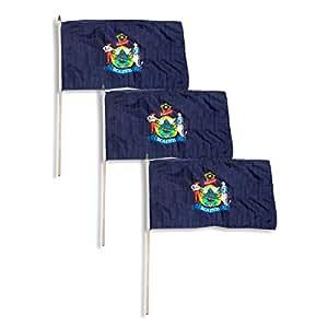 Bandera de Maine 12x 18inch