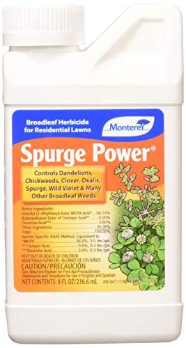 - Lawn & Garden Products LG 5588 LG5588 Monterey Spurge Power Broadleaf Weed Kill, 8 oz, Brown/A