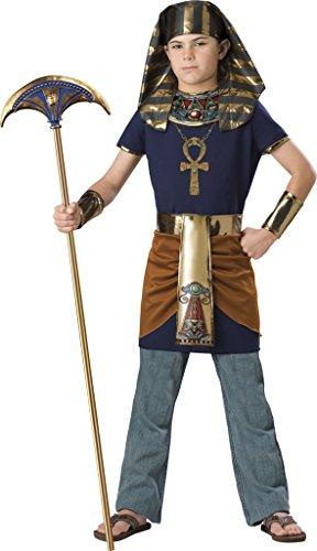 InCharacter Costumes Boy's  Pharaoh Costume, Blue/Gold, 8