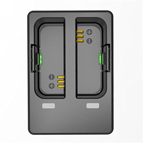 Original SJCAM Accessories Travel Desktop Charger Dual-slot Charger for SJCAM SJ6 Legend Sports Action (Original Dual Slot Desktop)