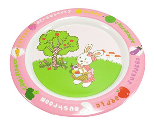 Review Kids Dinnerware Rabbit Bunny