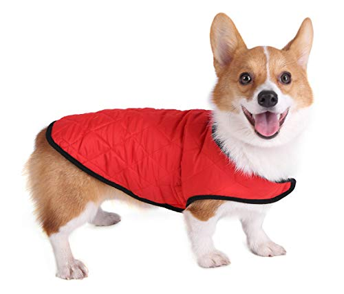 (JEMA Reversible Vest for Dogs Spring and Summer Dog Coat Jacket Comfortable and Breathable for Small Dogs, Medium Dogs and Large Dogs)