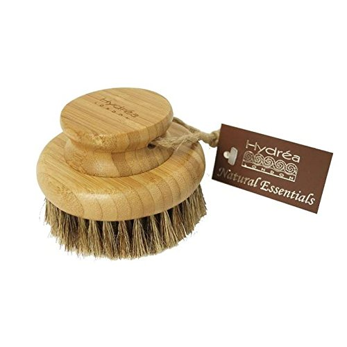 Hydrea London Bamboo Round Mane & Cactus Bristle Body Brush, Hard Strength (PACK OF 6) by Hydrea London