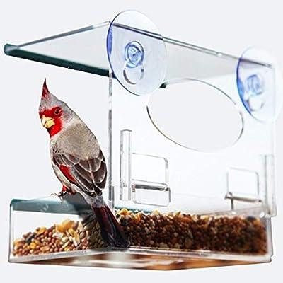 Birdhouse Casa de Pájaros Ventana de Acrílico Cortacésped ...
