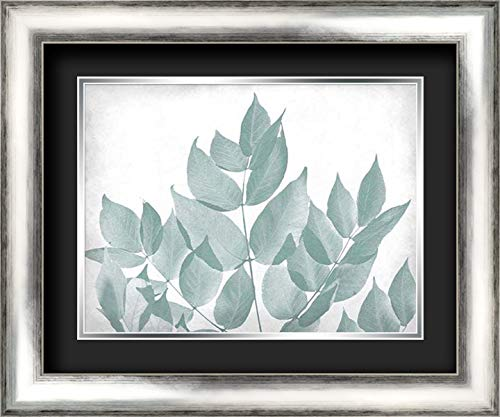 Antiqued Leaves 1 24x20 Silver Contemporary Wood Framed and Double Matted (Black Over Silver) Art Print by Kimberly, Allen