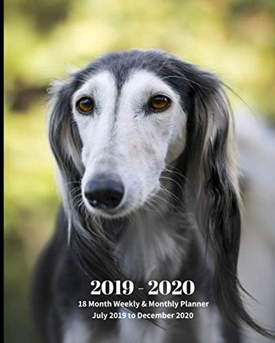 Greyhound Dog Breeds - 2019 - 2020 | 18 Month Weekly & Monthly Planner July 2019 to December 2020: Greyhound Dog Pets Animal Vol 61 Monthly Calendar with U.S./UK/ ... Holidays- Calendar in Review/Notes 8 x 10 in.