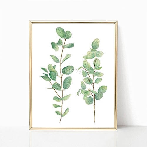 Silver Dollar Eucalyptus Leaves Print 8x10 or 11x14 Unframed Green Leaf Watercolor Painting Illustration Wall Decor Living Room Plant Decoration Art Decor by ArtsbyThao