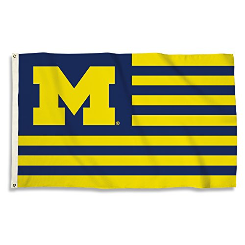 NCAA Michigan Wolverines 3' x 5' Flag with Grommets, Navy & Yellow,