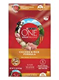 Purina ONE Chicken & Rice Dry Dog Food 31.1 lb. Bag
