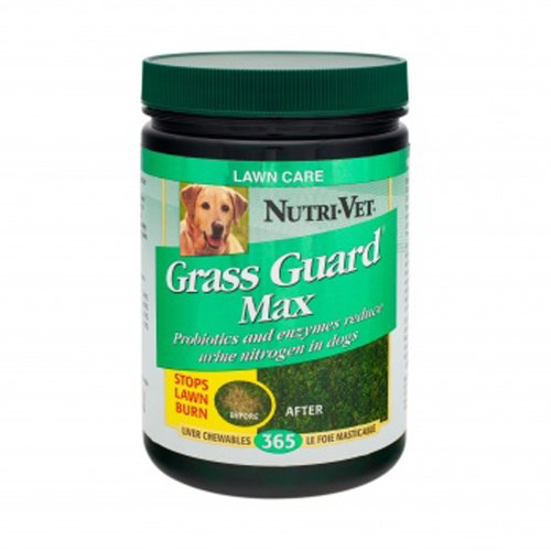 Nutri-Vet Grass Guard Max with Probiotics and Digestive Enzymes, 365 count, My Pet Supplies