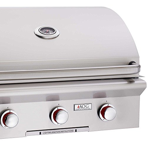 Top 10 High End Gas Grills Reviews 2019-2020 - Cover
