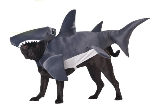 Animal Planet PET20107 Hammerhead Shark Dog Costume, Small -