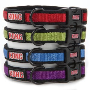 Kong Padded Dog Collar Small Green