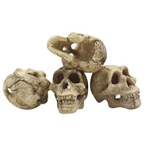iuchoice ❤️❤️ Halloween Aquarium Decorative Resin Skull Crawler Dragon Lizards Decoration -