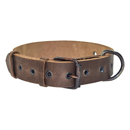Rustic Thick Leather Dog Collar For Medium Size Dog (10 to 19 Inches) Handmade by Hide & Drink :: Bourbon Brown
