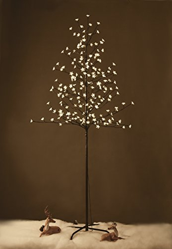 Cherry Tree Led Light Clear in Florida - 4