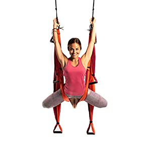 YOGABODY Naturals Yoga Trapeze [Official] – Yoga Swing/Sling/Inversion Tool with Free DVD, Orange