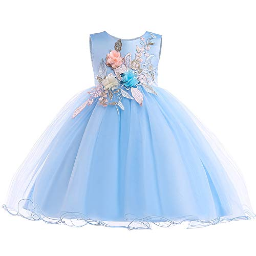 (Girl Sleeveless Dress Embroidery Princess Lace Party Dresses Kids Ball Gown - Flower Blue 6-7)