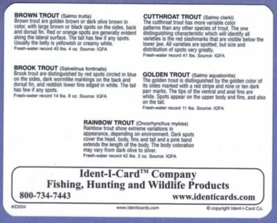 c79dbdc06ccc6 Buy Ident I Cards products online in Bahrain - Manama, Riffa ...