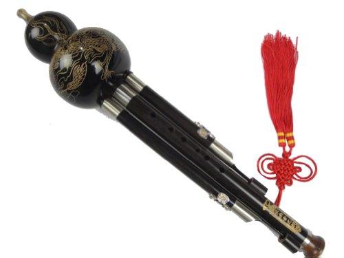 Prämie Ebenholz 3 Octave Handgeschnitzte Gourd Flute Hulusi Woodwind + Fall #112 - Ksotenloser Versand, Weltweit