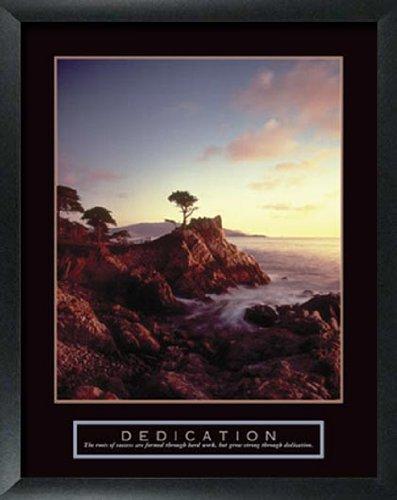 3 Framed Tree Motivational Posters Aspen Pine