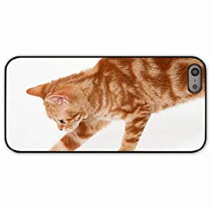 iPhone 5 5S Black Hardshell Case kitten tabby paw Desin Images Protector Back Cover by runtopwell