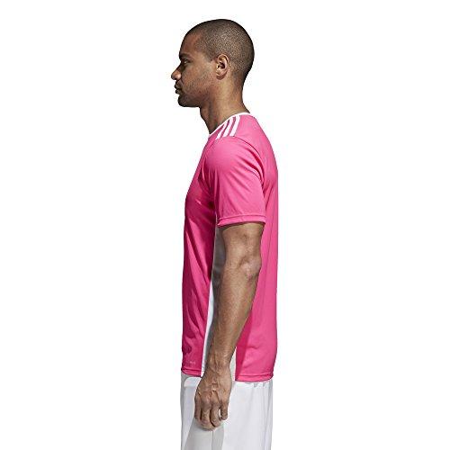 Teamtrikot Pink Homme Adidas Maillot Entrada white 18 Jsy Shock wWHwqzt0n