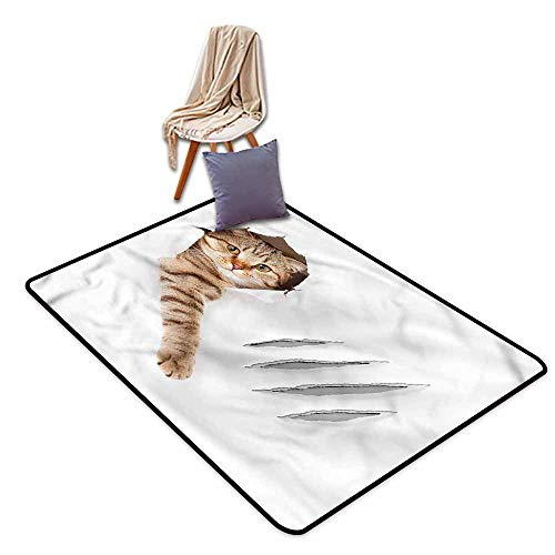 (Large Door mat,Animal Funny Cat in Wallpaper Hole,Ideal Gift for Children,4'11