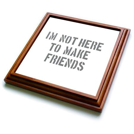3dRose Uta Naumann Sayings and Typography - Im Not There To Make Friends-Funny Motivation Typography on White - 8x8 Trivet with 6x6 ceramic tile (trv_272831_1)