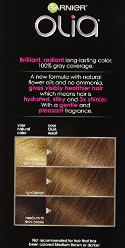 Garnier Olia Hair Color 6 3 Light Golden Brown Ammonia