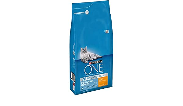 Purina ONE - Alimento seco para Gatos Adultos, Especial para Gatos esterilizados - Bolsa de 6 kg con croquetas de Pollo y Trigo: Amazon.es: Productos para ...